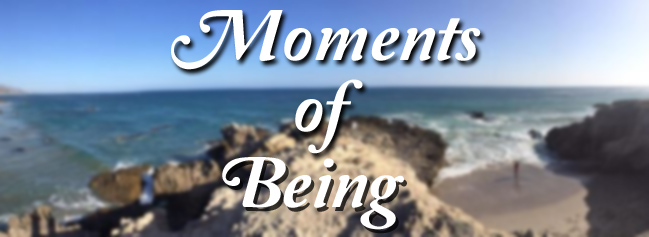 Moments of Being copy